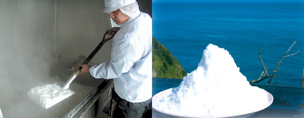 対馬塩の白松 写真1