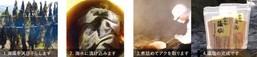 対馬塩の白松 写真2